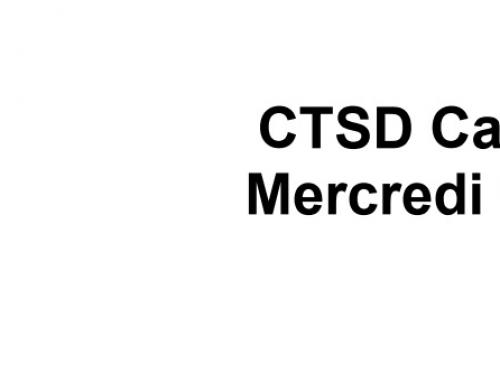 CTSD du mercredi 19 mai 2021